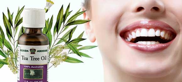 Масло чайного дерева эффективно для гигиены зубов